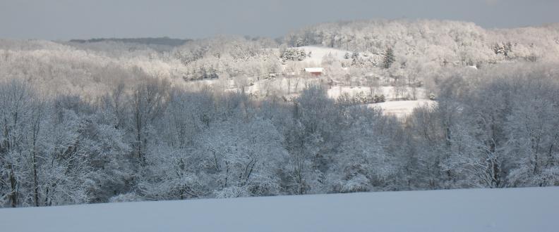 Snowy scene on Babcock Hill