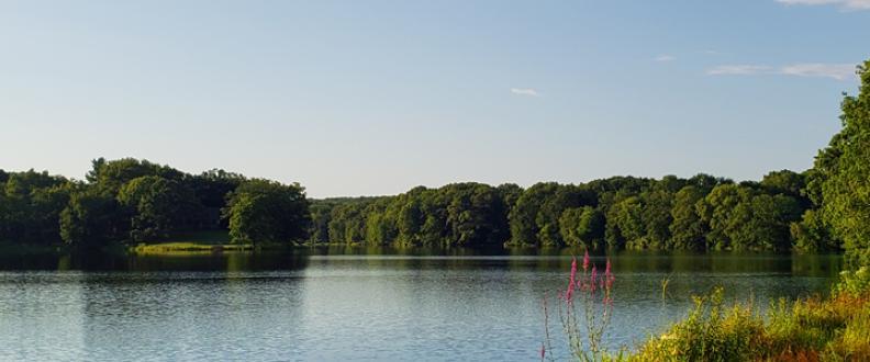 Savin Lake in late summer